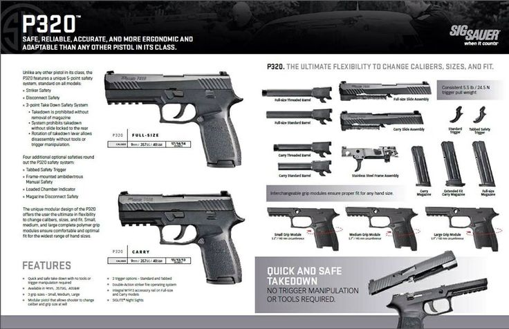SIG Sauer P320. Really liking this new offering from Sig. All the reviews are great.