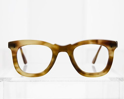 Tortoise frame from the collection of General Eyewear