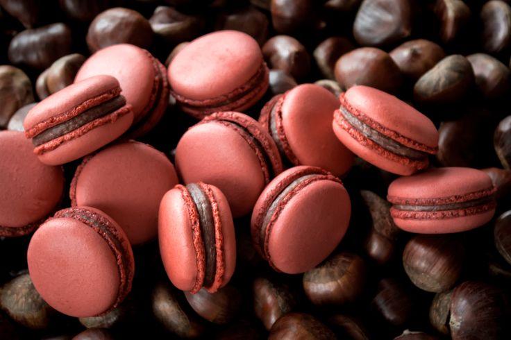Macarons with milk Valrhona chocolate ganache and chestnuts.