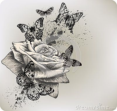 Background with rose and butterflies flying. Vecto by Murka34, via Dreamstime