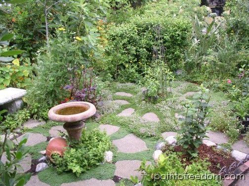 10 besten Schattenpflanzen Bilder auf Pinterest Mehrjährige - vorgarten anlegen nordseite