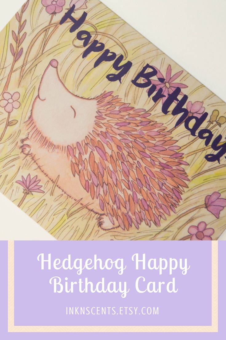 *Hedgehog Happy Birthday Card* Send some woodland fun with this cheerful hedgehog birthday card! We offer two different paper types for our cards. These hedgehog cards feature a thick 16pt paper stock. With a light satin coating on the outside illustration, the inside is left uncoated, making it easier for you to write your message. This premium matte stock gives each card the look of the original watercolor illustration.