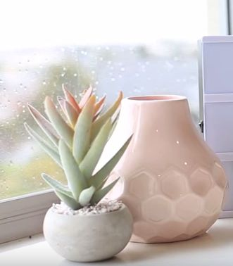 https://www.adairs.com.au/homewares/home-decor/succulent-collection?colour=Grey%20Small