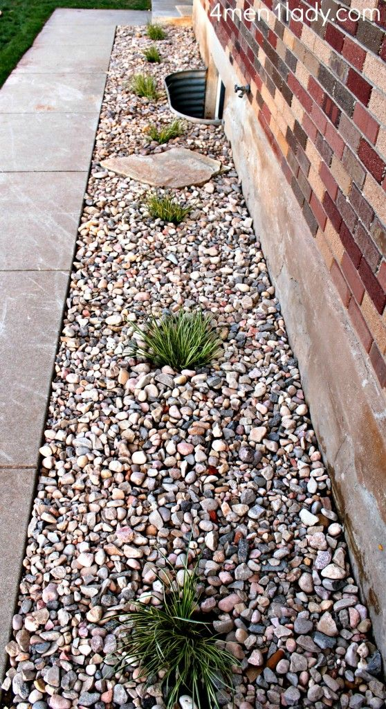 We have rocks around our house due to drainage issues - might have to add some plants like these!