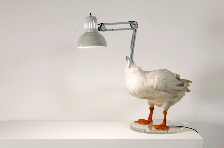 de-brillantes-lampes-extremement-creatives16