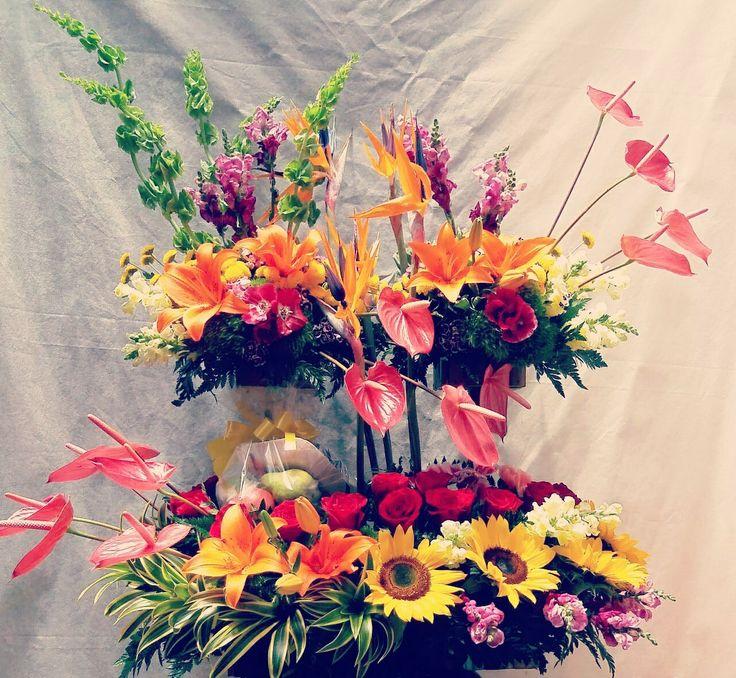 Florista ...Julian Ortiz ... PereirA colombia cel:3138771540