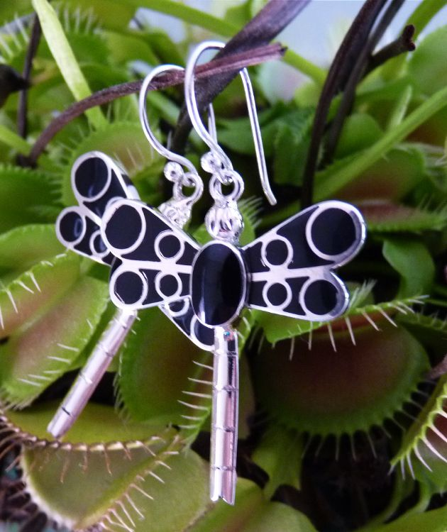 Black dragonfly earrings   Stand out from the crowd