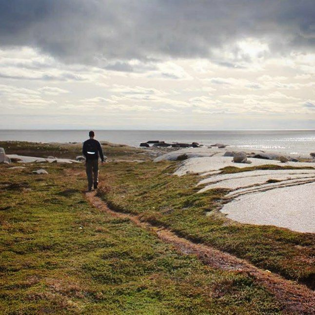 Pennant Point trail 🌊🌞 #hikens #halifaxnoise #eastcoast #explore #imagesofcanada #visitnovascotia