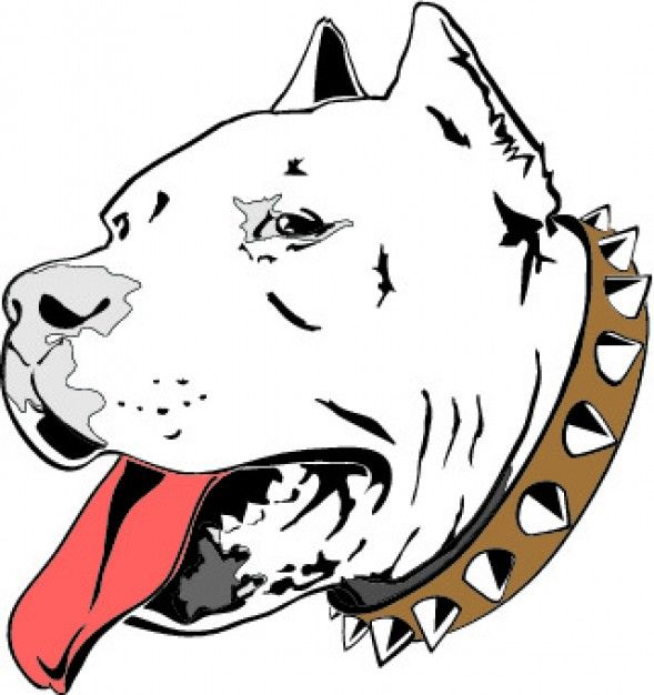 Pitbull head drawing icon vector | My Style | Pinterest ...