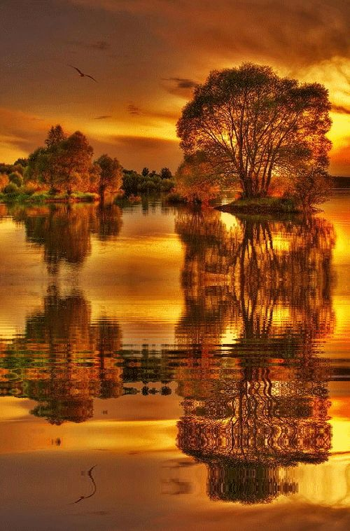 Image reflets