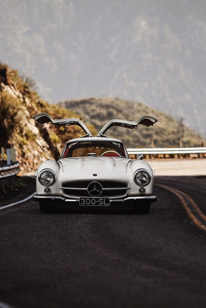 #mercedesbenz #300sl #asadegaivota (Fonte: http://glubbs.tumblr.com/post/104354641601/myheartpumpspetrol-come-fly-with-me-source)
