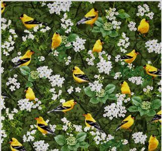 NIEUW Timeless Treasures gele vogels