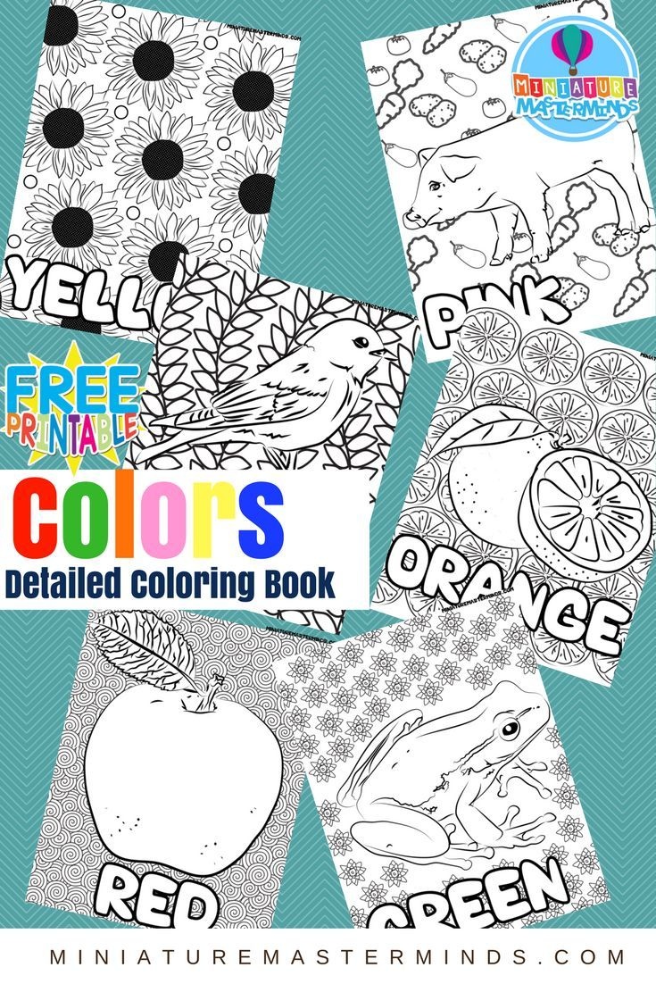 free printable colors highly detailed coloring book for preschoolers - Color Activity