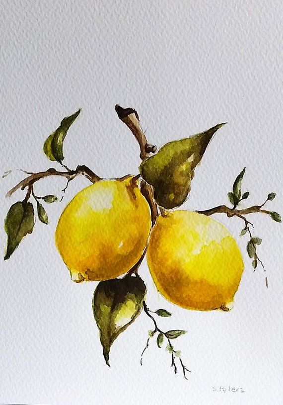 Original Watercolor Painting Citrus Fruit Lemon Tree Painting