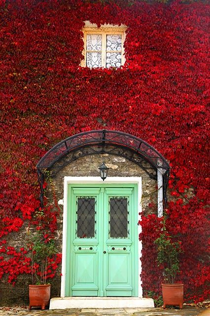 My dream home has an aqua blue door and flowers or ivy covering the sides of it.