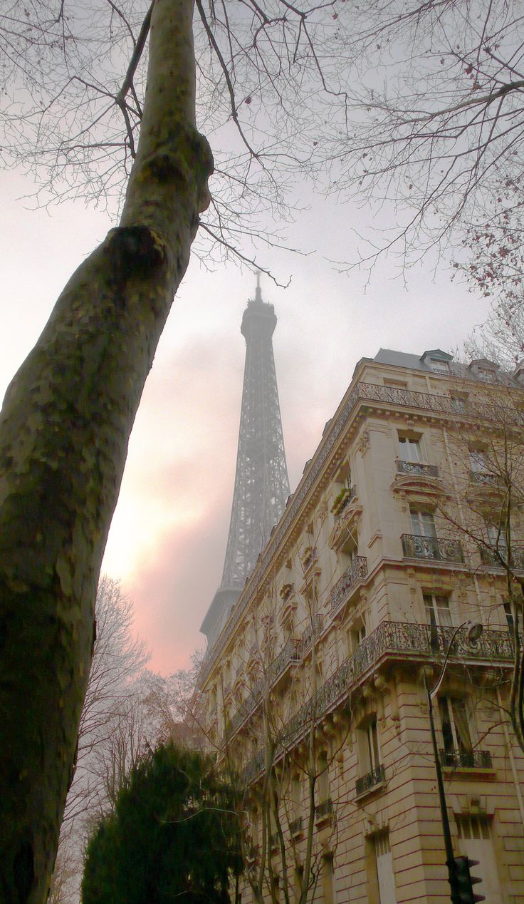Morning mist by the Eiffel Tower