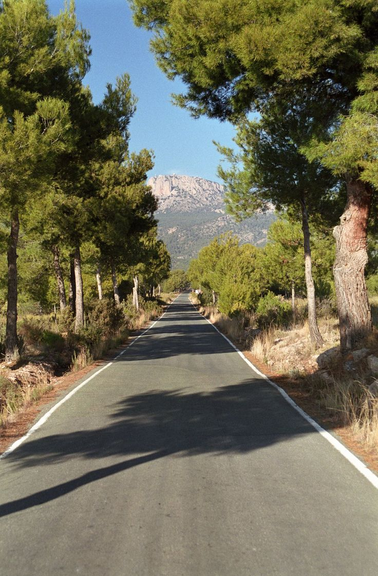 Enjoy the Sierra Espuña Parque Regional in Murcia