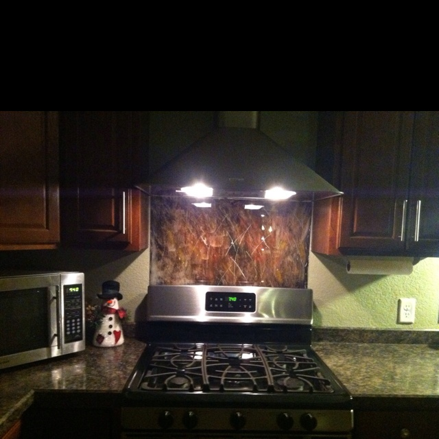 plexiglass backsplash painted with acrylic paint accomplished