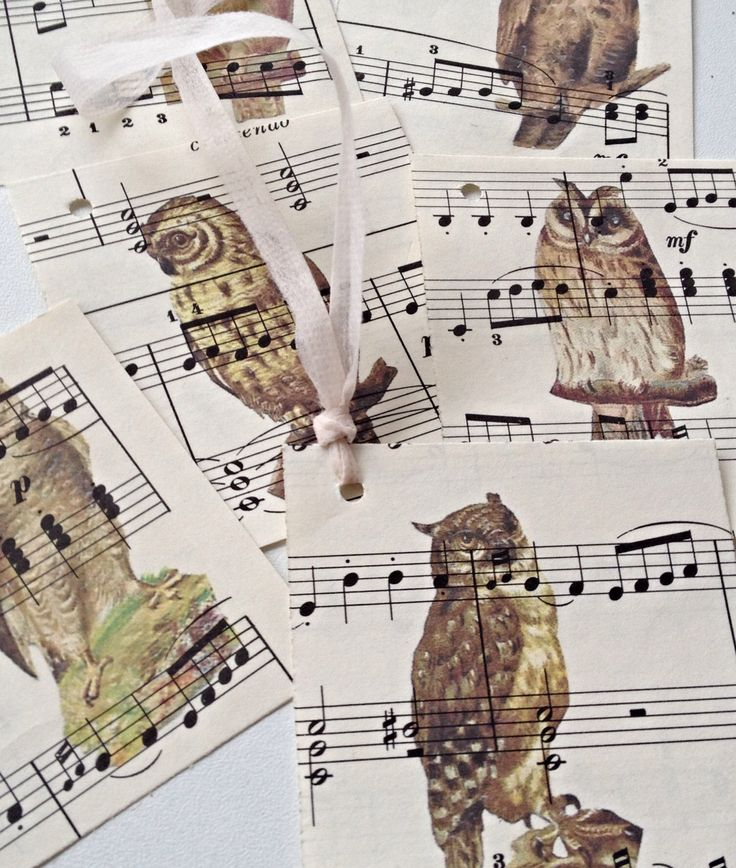 Owls music sheets labels
