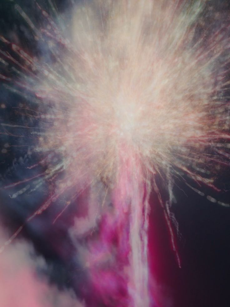 this is actually a long-exposure pic of fireworks but it looks kinda like a dandelion
