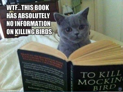Don't let the environmentalists see you reading that book Kitty!