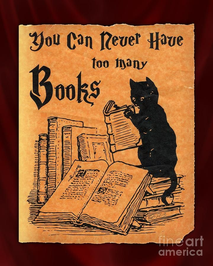 580 Best Images About Reading, Books, And Cats On