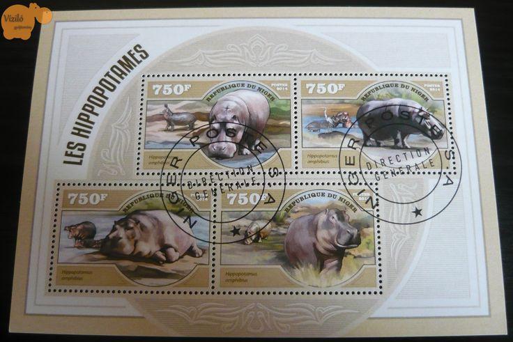 No. 805 | víziló | bélyeg | hippo | stamp