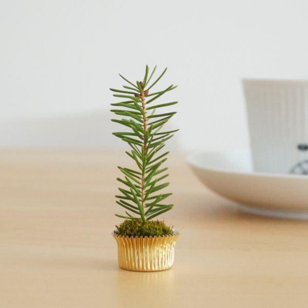 Mini-Weihnachtsbaum als Tischdeko