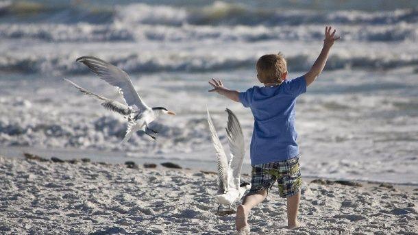 ADHS-Kinder haben auch viele positive Eigenschaften, findet Kinderarzt Klaus Skrodzki. (Quelle: Thinkstock by Getty-Images)
