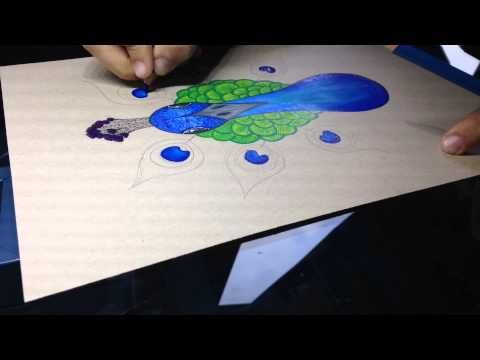 How to draw a peacock!