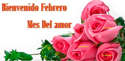 Imágenes de bienvenido febrero mes del amor | todo en imágenes