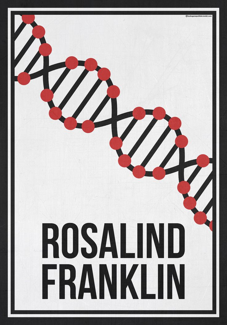 Minimalist poster by Hydrogene, celebrating Rosalind Franklin (25 July 1920 – 16 April 1958). Pinned in honour of her birthday. Her pioneering  X-ray diffraction images of DNA led to Crick and Watson's discovery of its structure. Her images and  accurate interpretation of the data provided the necessary insight into the DNA structure, but Franklin's contributions to the discovery of the double helix are often overlooked.