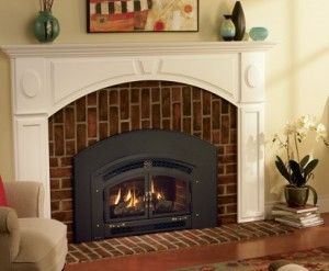 Wood burning fireplace inserts and Family rooms