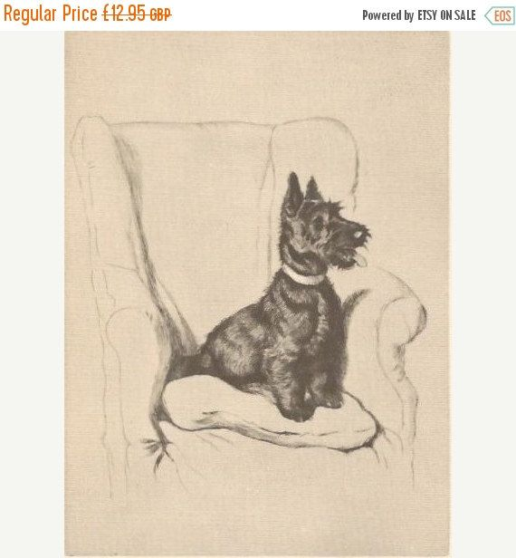 SALE CECIL ALDIN Print. The Aberdeen. Vintage Print. Vintage Bookplate. Dog Print.