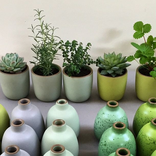37 Best Images About Office Greenery On Pinterest Flora