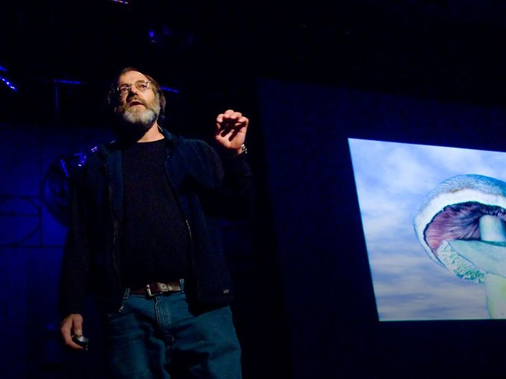 6 ways mushrooms can save the world | Talk Video | TED.com - Mycologist Paul Stamets lists 6 ways the mycelium fungus can help save the universe: cleaning polluted soil, making insecticides, treating smallpox and even flu viruses.