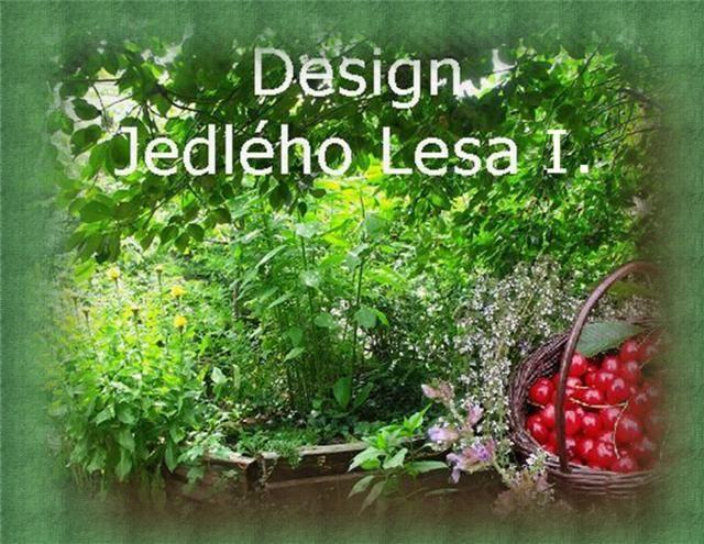 Design Jedlého Lesa