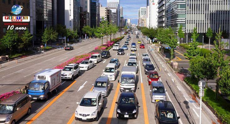 Después de revisada una ley de tráfico de haber entrado en vigor, más conductores ancianos devolverán sus licencias de conducir. Vea más información.