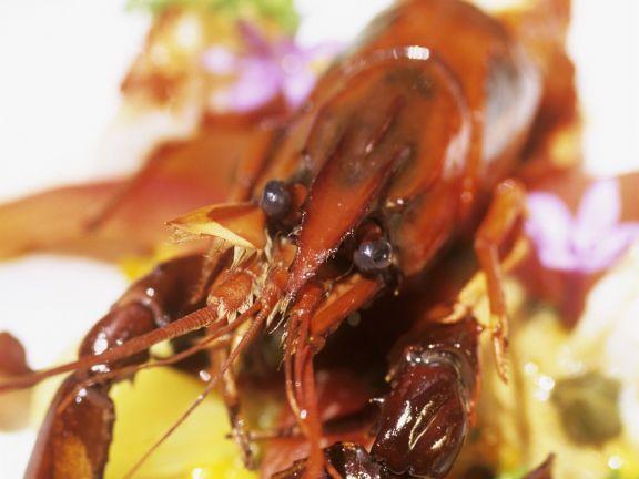 Südafrikanisches Gericht mit Flusskrebsen, Kastanien und Biltong ist ein Rezept mit frischen Zutaten aus der Kategorie Krebs. Probieren Sie dieses und weitere Rezepte von EAT SMARTER!
