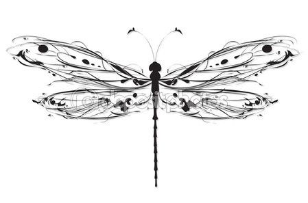 Abstract dragonfly vector illustration — Stock Vector © ColorValley #9340613