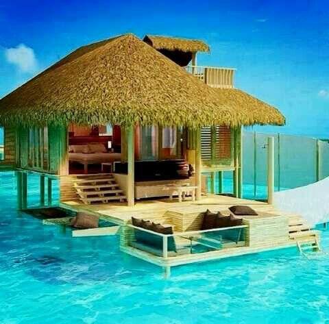 Quien quisiera vivir ahí??