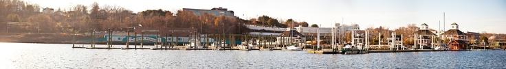 #Panarama #Harbor #Photography