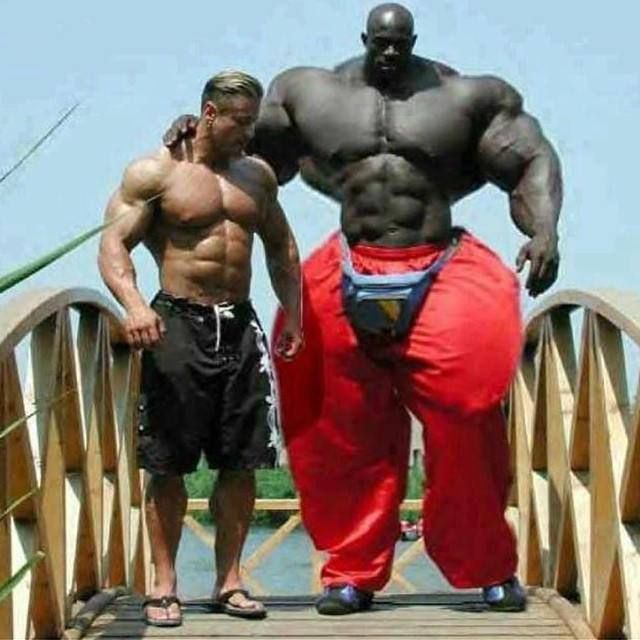 12 Gigantic Musclebound Bodybuilders That Actually Exist ...
