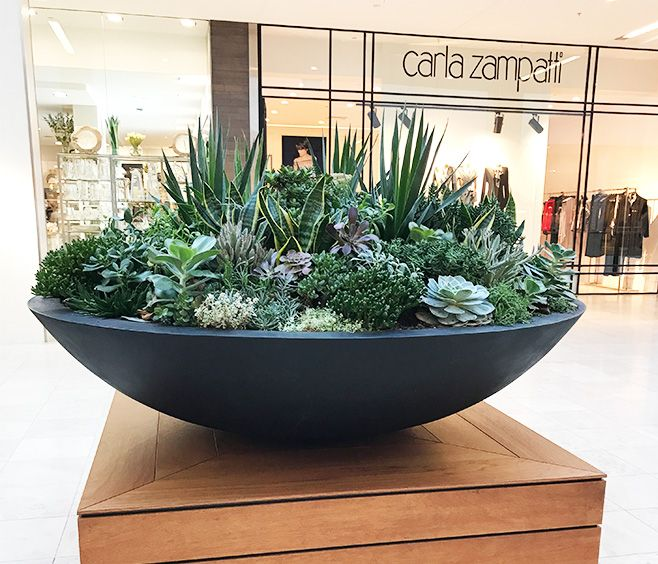 The Wok Bowl Is A Sleek Designer Planter Made From Premium Grc A Composite Material Consisting Of A Combi Succulent Bowls Succulent Garden Design Succulents