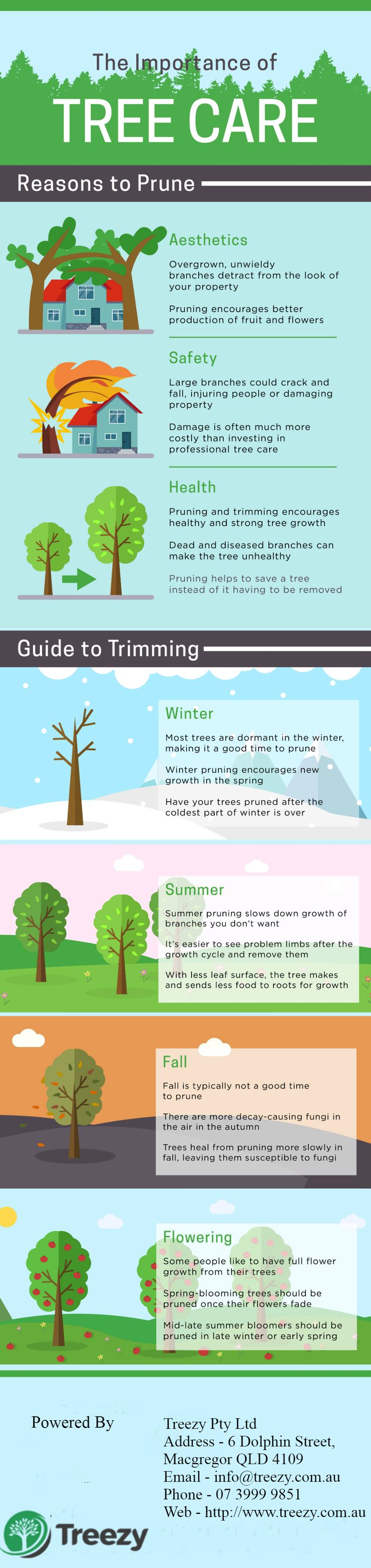 The importance of Tree care by treezy learn More reasons to prune and full guide of Trimming - If you are looking for professional Tree care services and Tree triming call now 07 3999 9851 or visit us http://www.treezy.com.au/  #treecare #reasonstoprune #treeprunning #treetrimming #treetrimmingbrisbanesouthside #treeprunningbrisbanesouthside