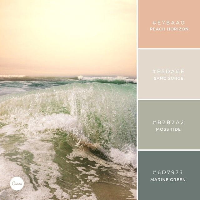 Vineyard room - peach, entryway - marine green, dining room - moss, kitchen/bar space cream