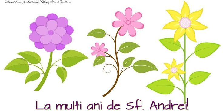 La multi ani de Sf. Andrei!