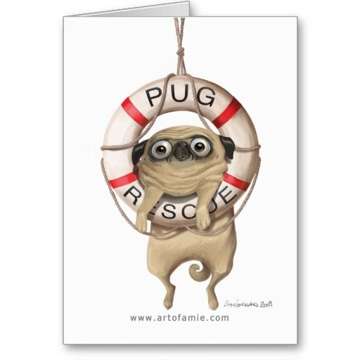 Squee! So cute. Pug Rescue Card. Dog, kawaii