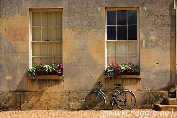 Google Image Result for http://www.reggie.net/photos/england/cambridgeshire/cambridge/downing_college/east_range/10021415_bicycle_window_boxes_sandstone_downing_college_cambridge-600.jpg
