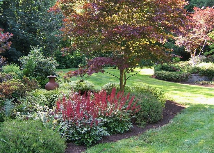 308 best images about garden landscape inspiration on for Garden design with japanese maple